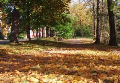 Trädgårdsgatan i Höstskrud