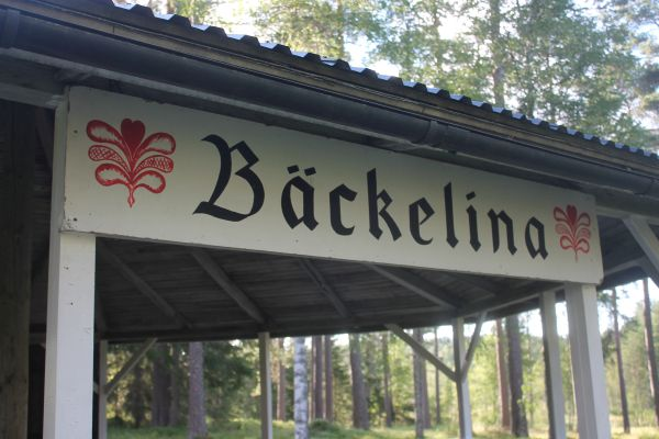 backelinap04