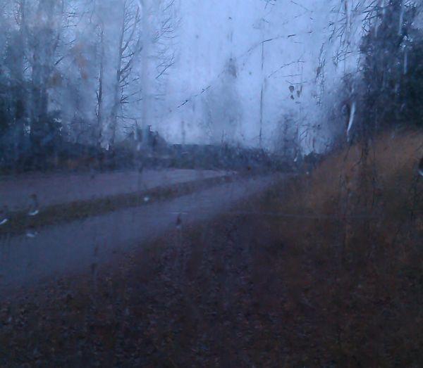 regn15