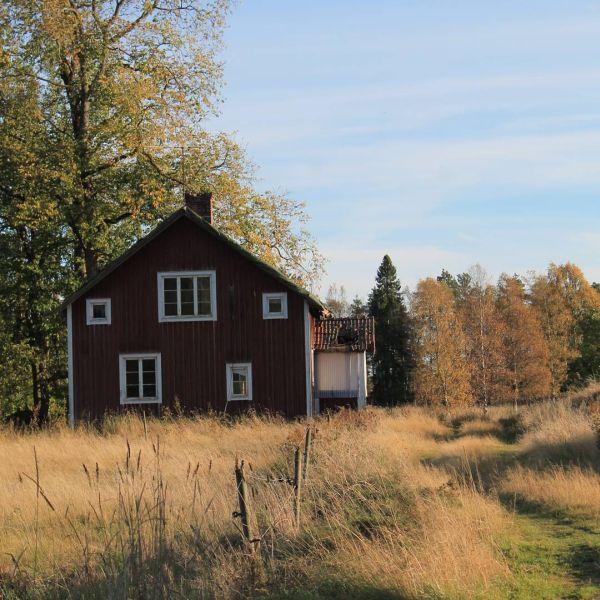 Hö i Vä. @ig_varmland  #hö #ö #kungsskogen #ig_varmland